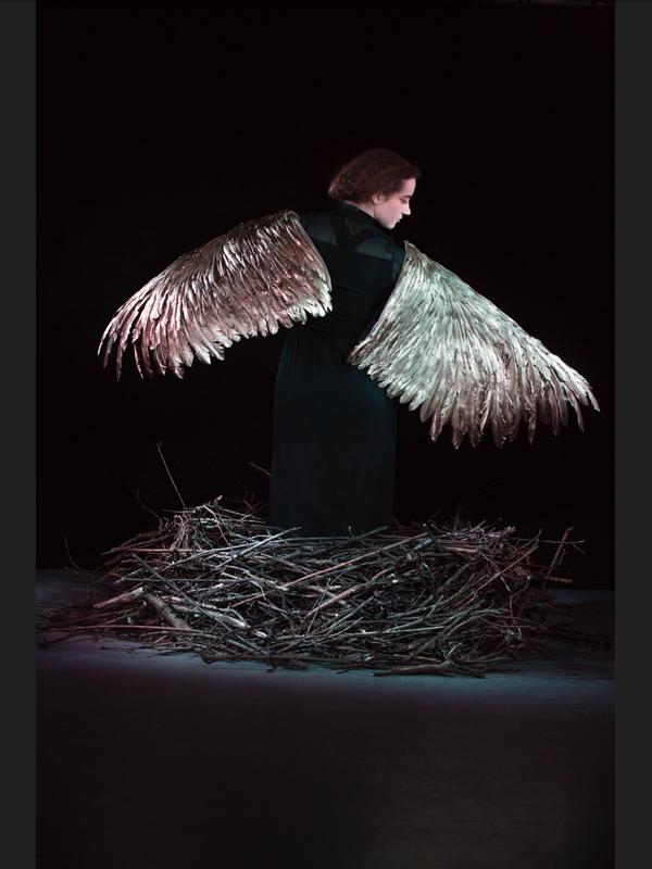 Bird. Credit: Julia Bauer