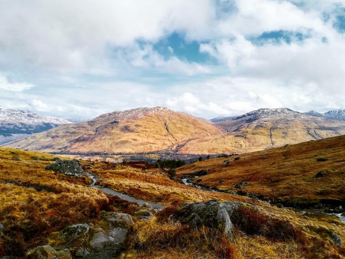 IETM Multi-location Plenary Meeting October 2020: Scotland
